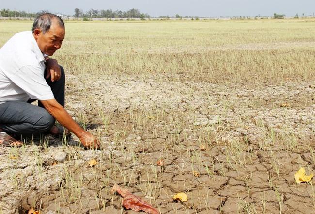 Hơn 1 triệu người thiếu nước đón tin vui khi Liên Hợp quốc hỗ trợ Việt Nam chống biến đổi khí hậu