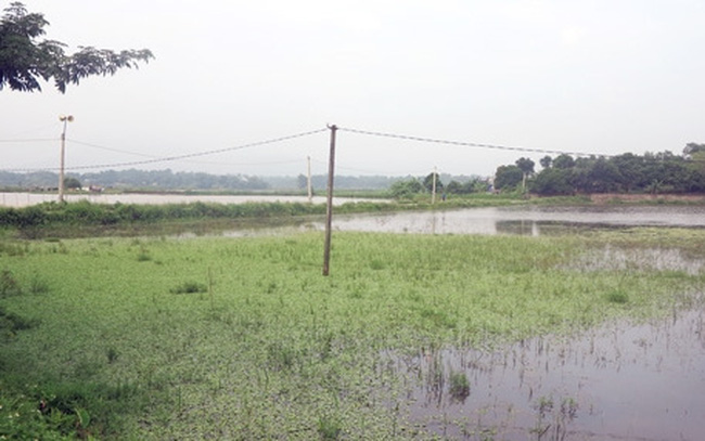 Huyện Cẩm Khê, Phú Thọ: Ngao ngán với dự án 8 năm chưa xong