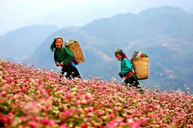 Đưa Hà Giang trở thành địa bàn trọng điểm về du lịch