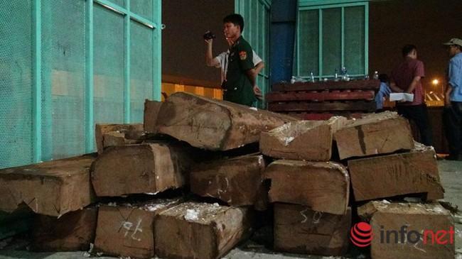 Lại phát hiện 2 container nghi là ngà voi nhập lậu, giấu trong gỗ