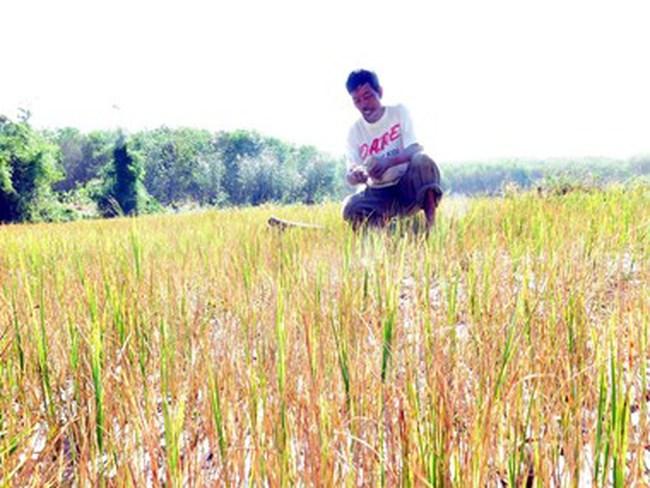 Trung Quốc thông báo kế hoạch xả nước trên sông Mekong