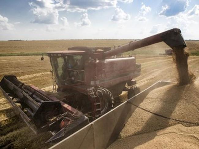 """Ukraine chính thức """"cấm cửa"""" các mặt hàng lương thực nhập từ Nga"""