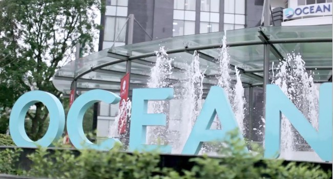 Ocean Group: Sẽ triển khai  DA 25 Trần Khánh Dư và 19 Nguyễn Trãi