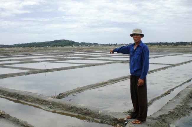 Rớt giá thê thảm, vùng muối Sa Huỳnh đứng trước nguy cơ xóa sổ