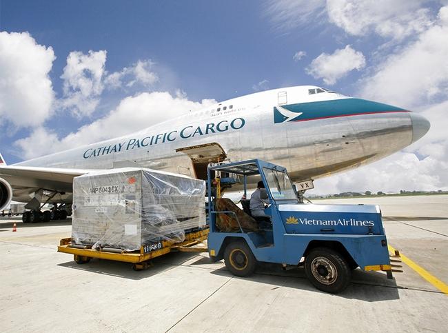 Nội Bài Cargo (NCT) chốt quyền nhận cổ tức bằng tiền tỷ lệ 50%