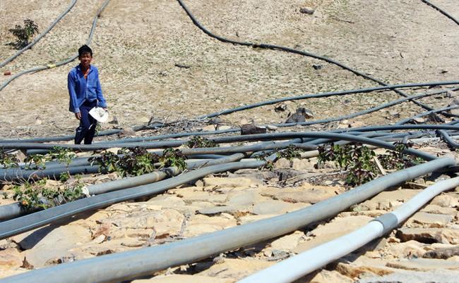 Nếu Ninh Thuận tiếp tục khô hạn như năm 2016, dự án thép 10 tỷ đô Hoa Sen – Cà Ná xử lý vấn đề nước ra sao?