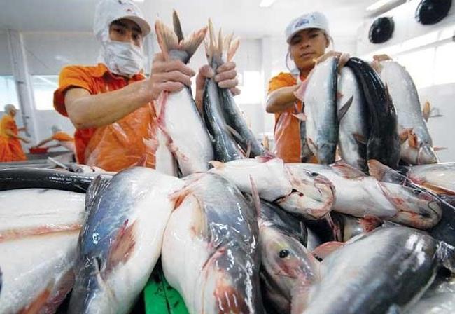 Năng suất lao động ngành nông lâm thủy sản đạt 31 triệu đồng/năm