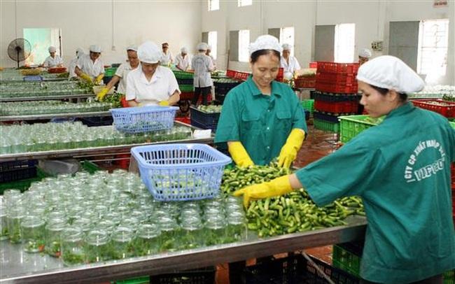 Xuất khẩu rau quả có thể đạt 2,5-2,6 tỷ USD
