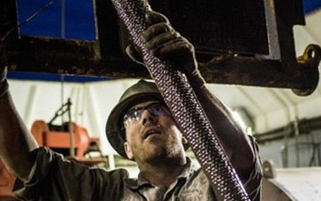 Giá dầu mất 2% vì số liệu trữ lượng sản phẩm dầu tăng đột ngột