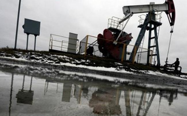 """Giá dầu """"tranh thủ"""" leo đốc khi đồng USD suy yếu"""