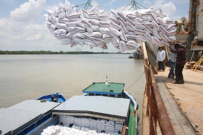 Tìm thị trường cho hạt gạo