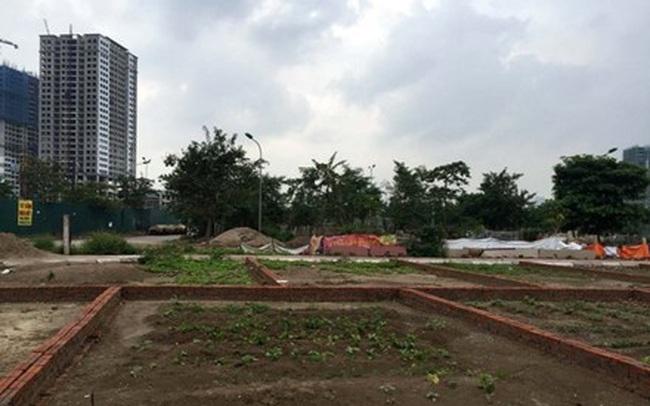 Hà Nội thu 2.426 tỷ đồng từ đấu giá đất