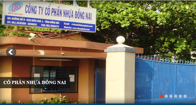 Sau quyết định mua Nhựa Tân Phú, Nhựa Đồng Nai tính tăng vốn lên 300 tỷ đồng