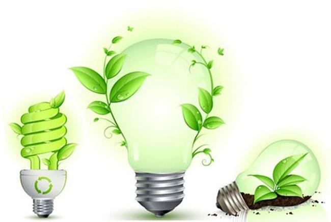Bóng đèn Điện Quang (DQC): Vượt 34% kế hoạch lợi nhuận, tính chia cổ tức tỷ lệ 35%