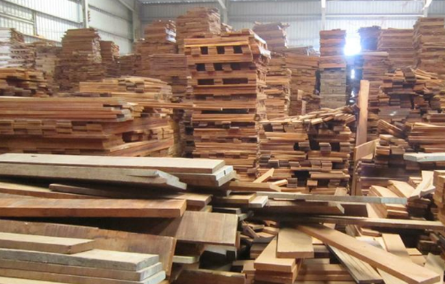 Gỗ Thuận An (GTA): 9 tháng hoàn thành 93% kế hoạch lợi nhuận, dự kiến tiêu thụ 113.400m3 gỗ trong quý 4