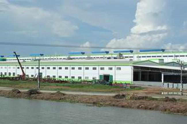 Thủ tướng yêu cầu kiểm tra việc chấp hành bảo vệ môi trường của Nhà máy giấy Lee&Man