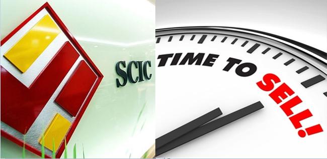 """Hai nhà đầu tư cá nhân """"gom"""" sạch gần 3,3 triệu cổ phiếu QNC từ SCIC"""