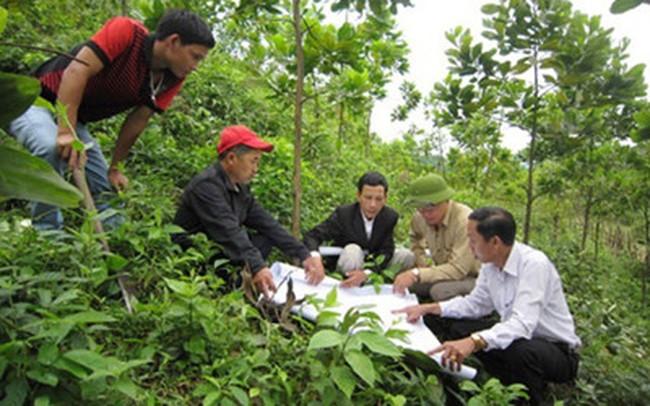 Doanh nghiệp nông nghiệp chưa hấp dẫn nhà đầu tư chiến lược?