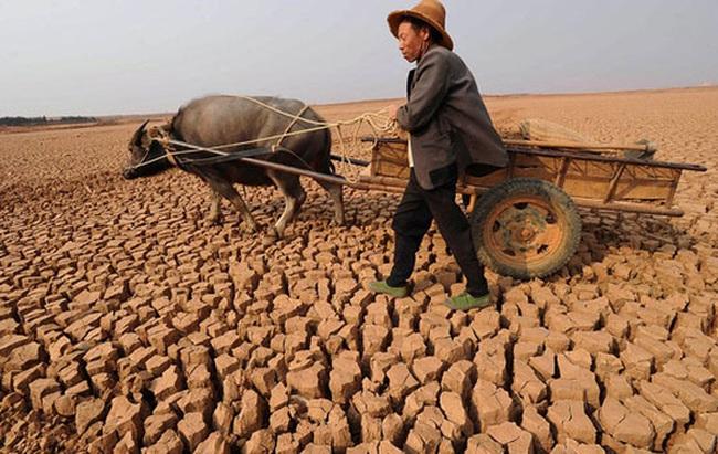 Việt Nam đứng thứ 5 trên toàn cầu về thiệt hại do biến đổi khí hậu