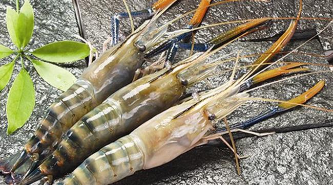 Thực phẩm Sao Ta (FMC) đặt mục tiêu lãi 100 tỷ đồng năm 2017