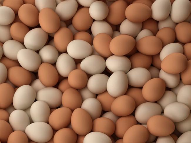 Miễn kiểm dịch trứng gia cầm liệu có an toàn?