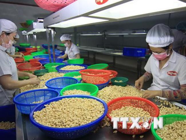 Năm 2015 Việt Nam xuất siêu sang Canada đạt gần 2,7 tỷ USD