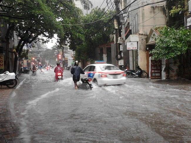 Hà Nội: 3 người bị thương, 100 cây xanh bị đổ trong cơn bão số 3