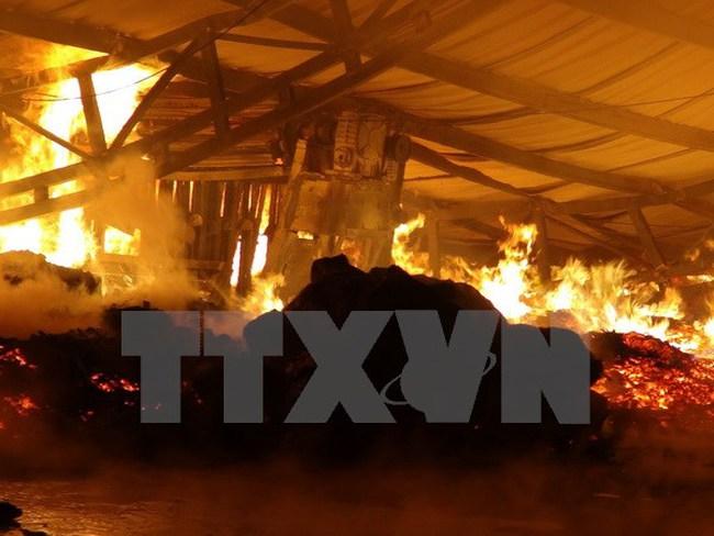 Cháy lớn tại xưởng điều ở Bình Phước, thiệt hại hàng trăm triệu đồng