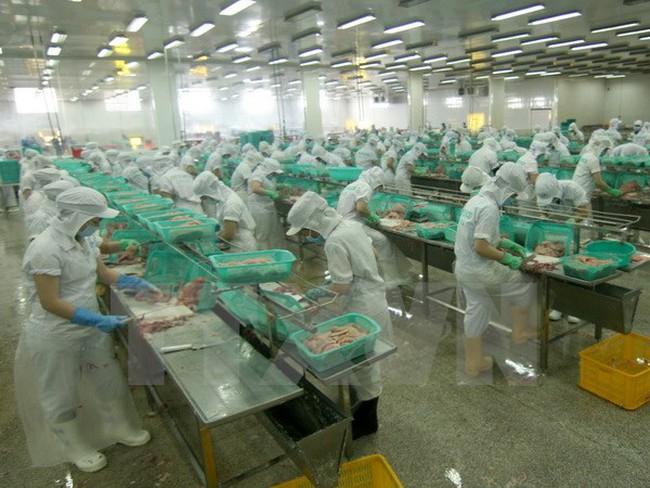 Bộ Thương mại Hoa Kỳ ban hành kết quả sơ bộ đối với tôm Việt Nam