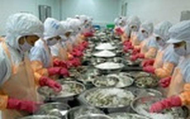 Mỹ chính thức tăng thuế chống bán giá trên tôm Việt Nam lên gần 4 lần