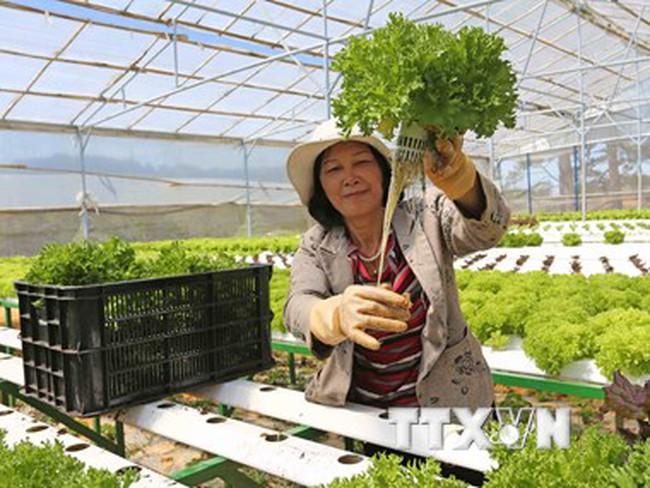 6 thị trường trọng điểm xuất khẩu nông lâm thủy sản trong năm 2016