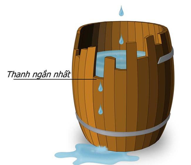 Nguyên lý thùng gỗ: Ai muốn kinh doanh, định mở cửa hàng đều phải biết nếu không muốn thua lỗ