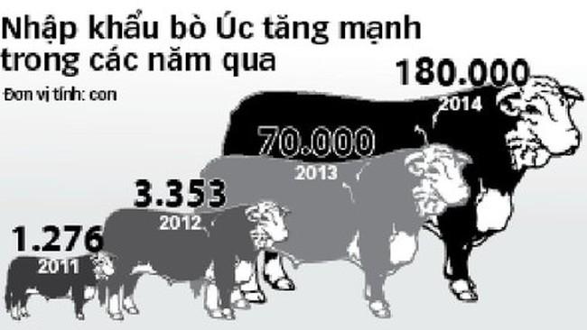 Úc ngừng bán bò cho một số lò phía Bắc, giá cả thế nào?