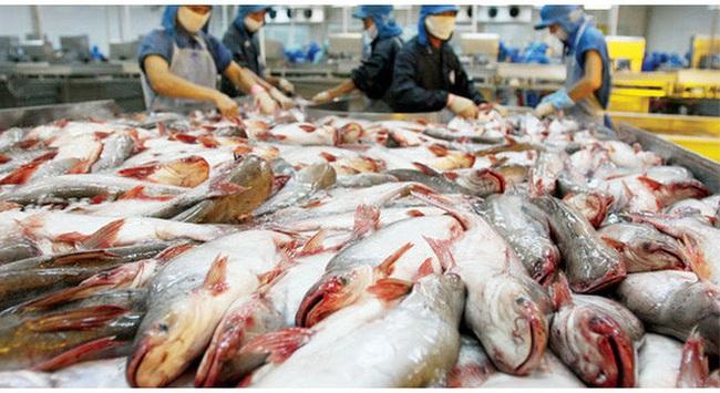 Thủy sản Hùng Vương đặt mục tiêu lãi 700 tỷ đồng năm tài chính 2016-2017