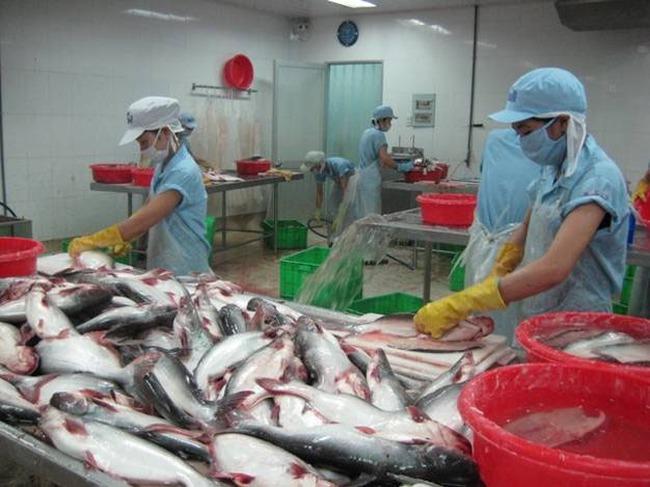 Hoa Kỳ cam kết không làm gián đoạn xuất khẩu cá tra Việt Nam