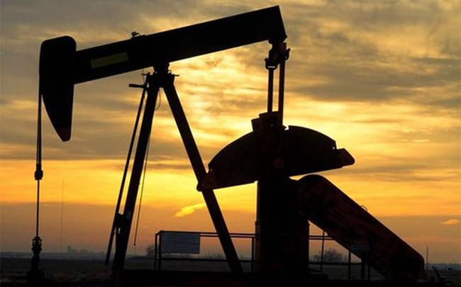 Giới đầu tư bán khống dầu đang trỗi dậy