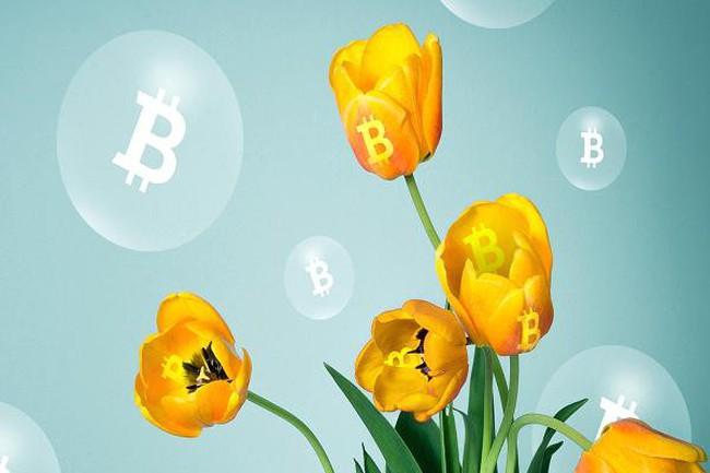 Chuyên gia blockchain dự đoán Bitcoin chạm mốc 60.000 USD trong năm 2018 nhưng cũng sẽ lao dốc một lần nữa