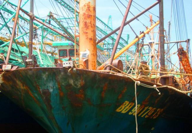 Thủ tướng yêu cầu điều tra việc đóng tàu cá kém chất lượng