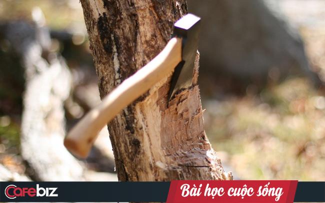 Chuyện vác rìu lên núi chặt cây và bài học về sự kiên trì: Ai cũng cần biết nếu muốn thành công trong cuộc sống