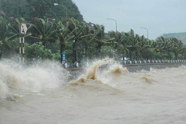 Bão số 12 cách bờ biển Khánh Hòa - Ninh Thuận khoảng 500km