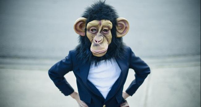 Những khoản đầu tư đen đủi nhất năm con khỉ