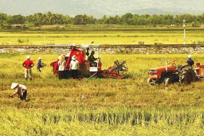 Là nước thuần nông, nhưng tại sao Việt Nam không hấp dẫn nhà đầu tư ngoại rót vốn vào nông nghiệp?