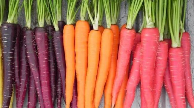 Cà rốt tím - siêu thực phẩm với sức khỏe