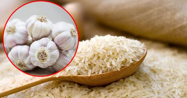 Bỏ vài tép tỏi vào thùng gạo, tưởng chừng vô nghĩa nhưng hiệu quả bất ngờ