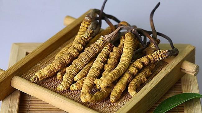 Đông trùng hạ thảo Tây Tạng được rao bán giá cả tỷ đồng