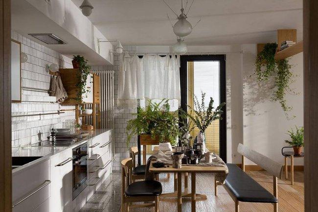 Căn hộ đẹp như mơ với cây xanh và nội thất gỗ