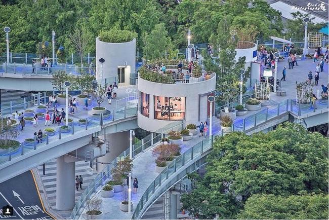 Xem cách người Hàn biến cầu vượt thành công viên ngập cây xanh