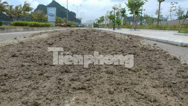 Xe quá tải lộng hành, người dân Quảng Ninh 'kêu trời'