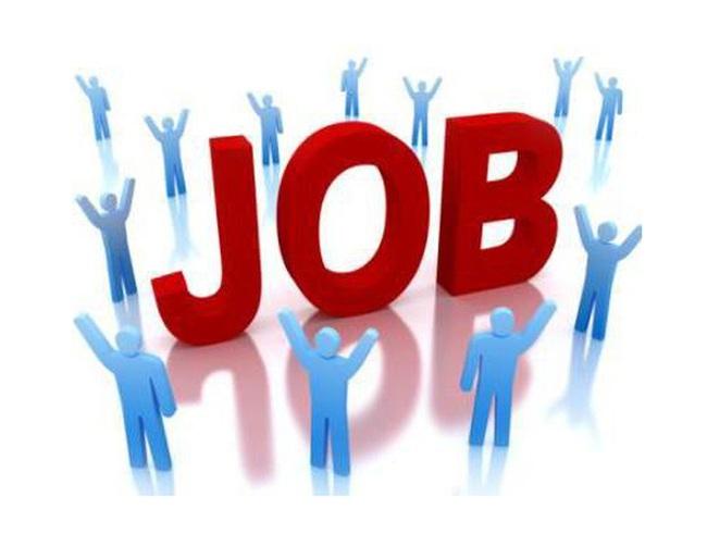 VIDEC tuyển dụng Giám đốc tài chính
