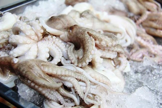 Hưởng thuế suất 0%, xuất khẩu bạch tuộc sang Hàn Quốc đầy triển vọng